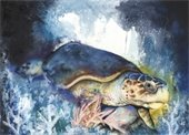 """Loggerhead Sea Turtle"", painting by Anthony Burks"