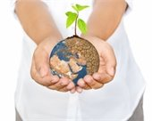 A child's hands holding the earth with a plant seedling growing out of the top