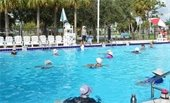 Women in the pool doing water aerobics