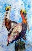 Watercolor painting of 2 pelicans by Tammy Seymour