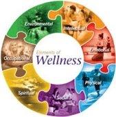 """Elements of Wellness"" showing people doing wellness activities"