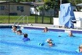 Adults doing water aerobics in the pool