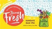 gardens greenmarket open sundays 8-1pm 10500 north military trail