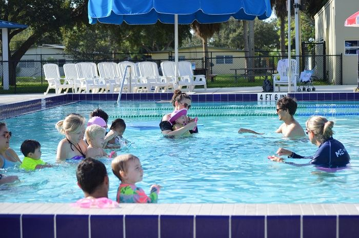 Parents and toddlers in the pool doing swim lessons.