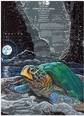 """Black Turtle Nesting Turtle"" painting by Carly Mejeur"