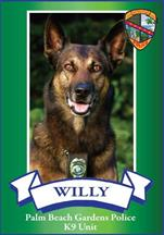 K9 Willy