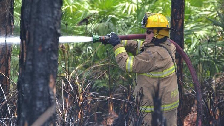 Firefighter with Hose in Brush.