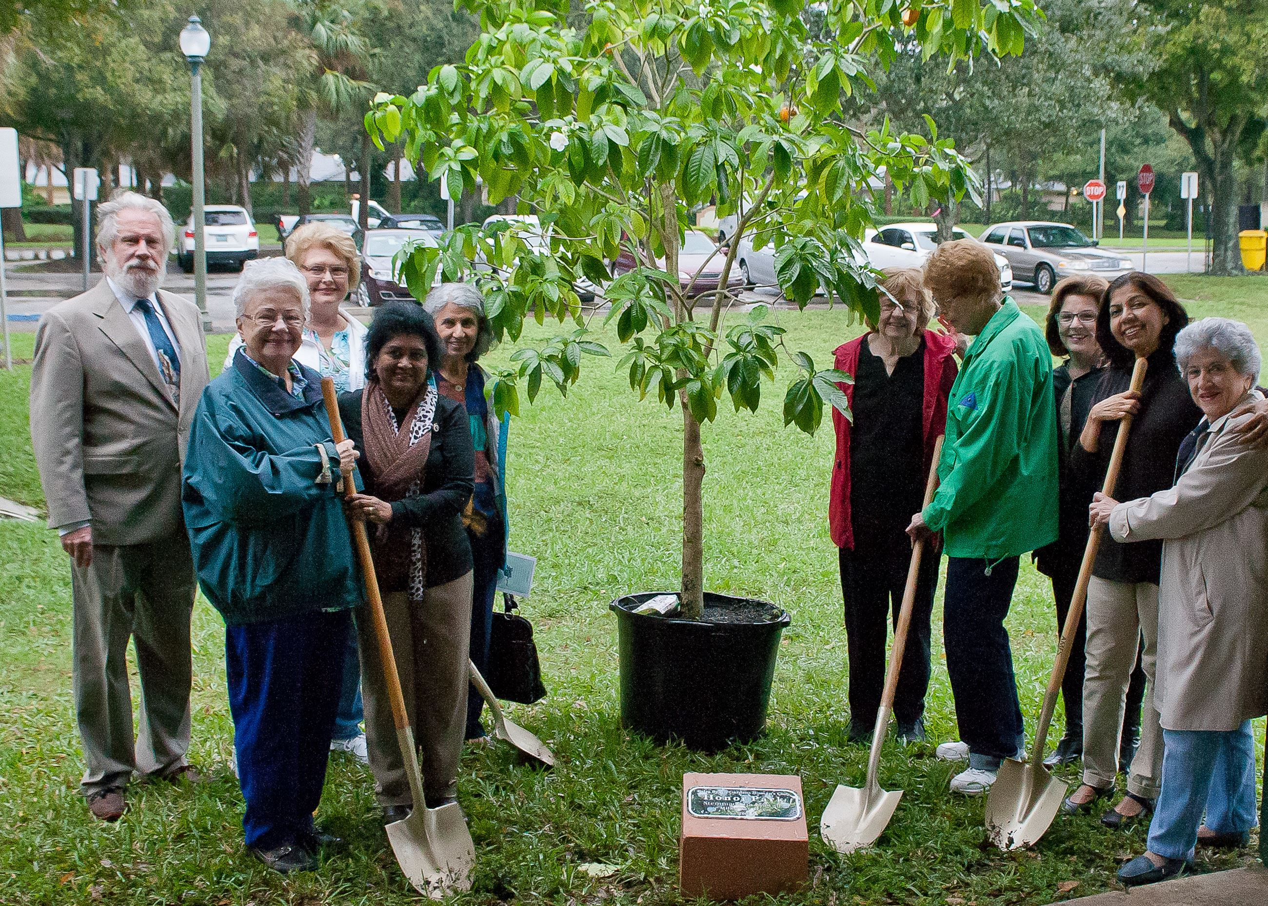 Arbor Day 2016 planting a tree