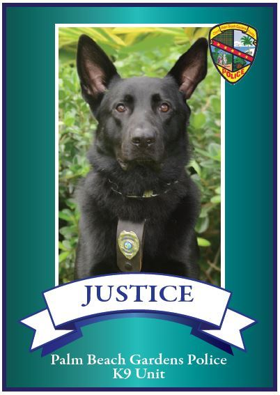 Image of K9 Justice