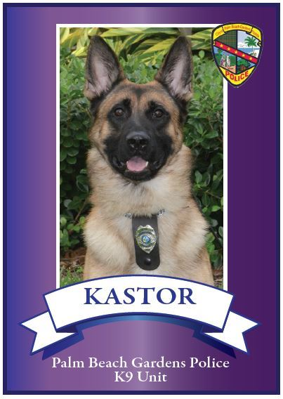Image of K9 Kastor