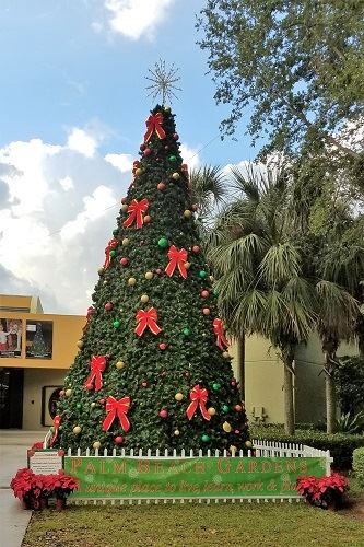 An outdoor Christmas tree with decorations and a star on top