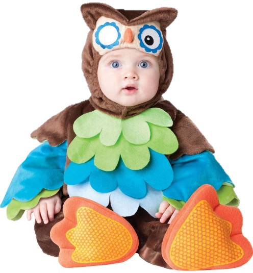 A toddler wearing a turkey costume