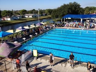 Swim Team Swimmer Pbg Makos Logo Compeion Pool