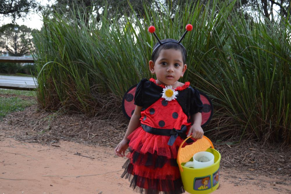 Young girl dressed in lady bug dress with wing